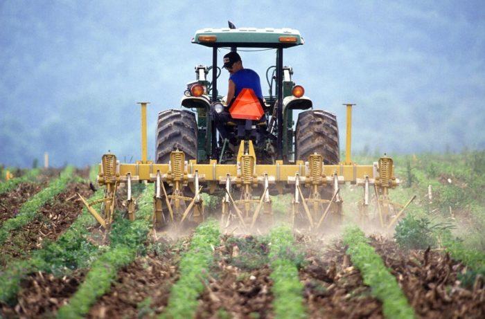 Como fazer um consórcio para terreno rural